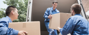 Palm Beach Movers